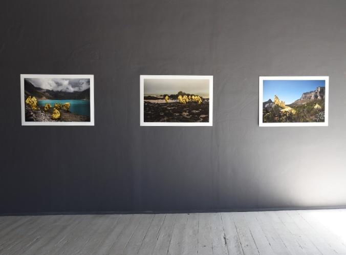 Space-Between-Cape-Town-Memento-Mori-Andy-Moller-1